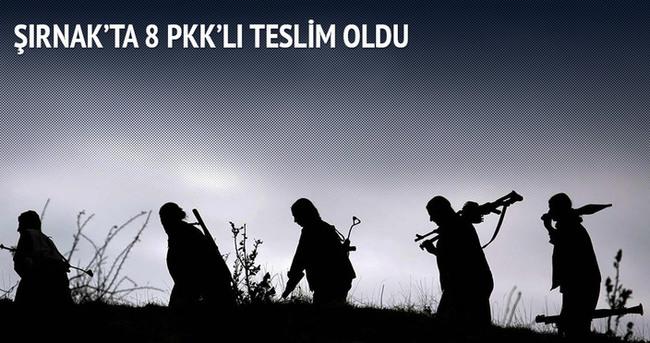 Şırnak'ta 8 PKK'lı daha teslim oldu