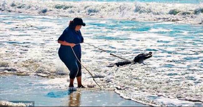 Timsah, okyanus sahiline vurdu