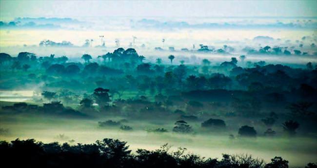 Amazon ormanları eskiden tarlaymış!