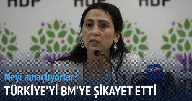 HDP Türkiye'yi BM'ye şikayet etti