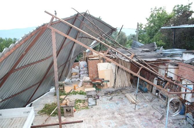 Aydın'da Fırtına Çatı Uçurdu, Meyveler Dibine Döküldü