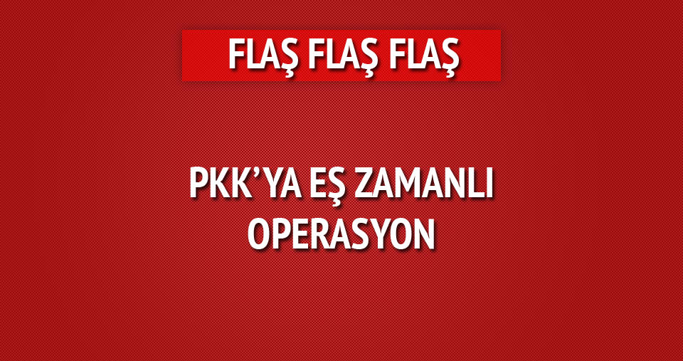 Ankara'da PKK'ya eş zamanlı operasyon