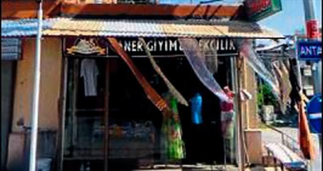 Asırlık çınar ağacı için işyerinin çatısını deldi