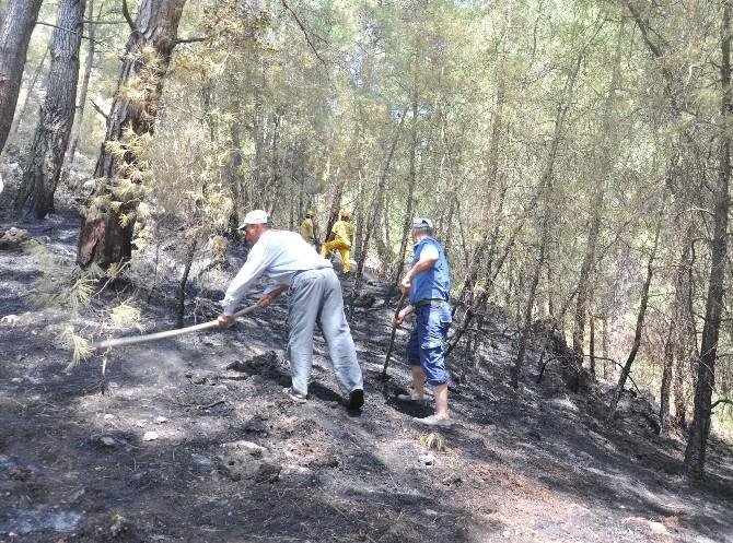 Muğla'daki Yangına İlk Müdahale Vatandaşlardan