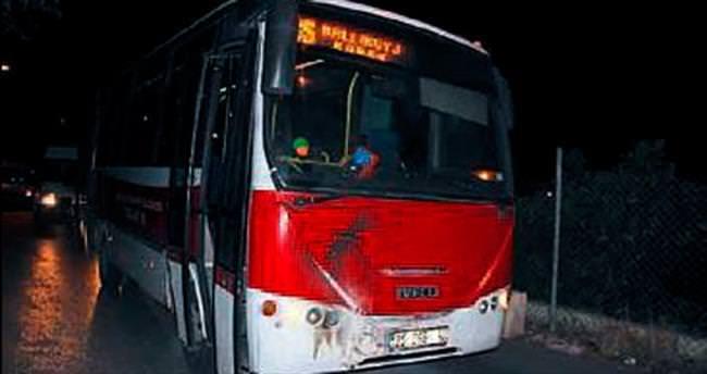 Belediye otobüsüne molotof atıp kaçtılar
