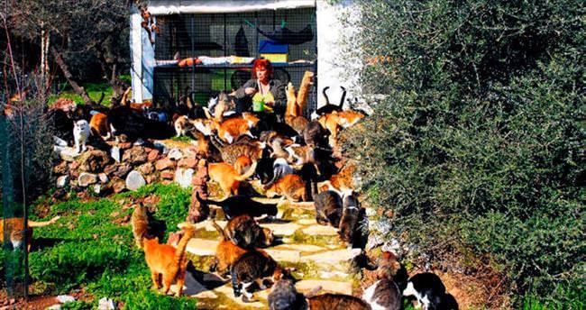 Sokak hayvanlarının annesi