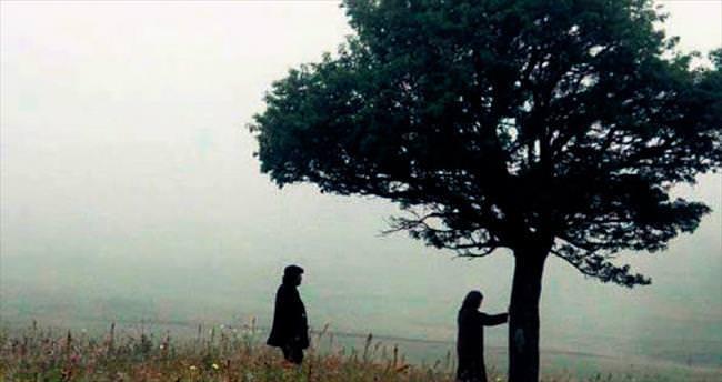 Türk filmleri dünyada festivalden festivale koşuyor