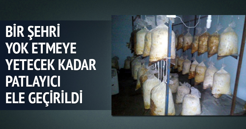 Diyarbakır'ı yok etmeye yetecek kadar patlayıcı ele geçirildi