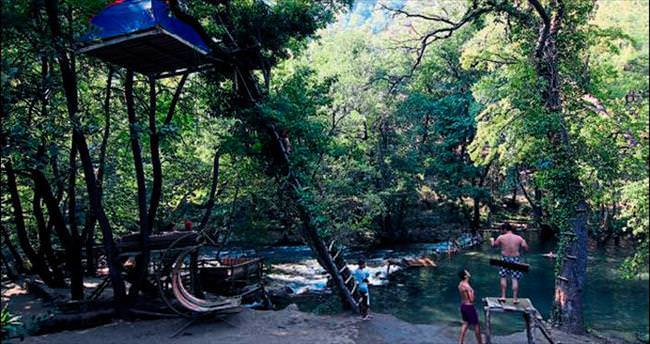 Ağaçta kamp çadırı