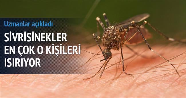 Sivrisinekler en fazla hamileleri ısırıyor