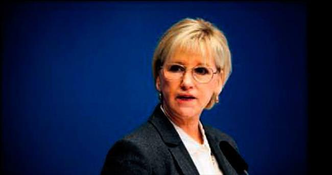 İsveç'ten terörle mücadele desteği