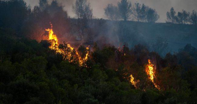 ABD'de orman yangını durdurulamıyor