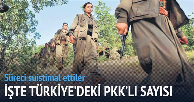 Türkiye'deki PKK'lı sayısı: 2 bin 500