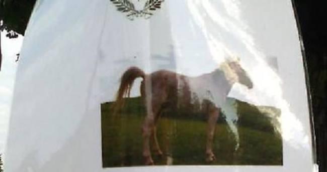 İtalya'da atlara don giydirmeyene 500 euro ceza