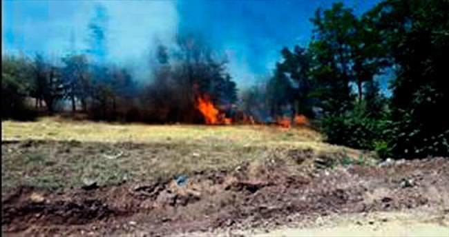 Mesire alanında korkutan yangın