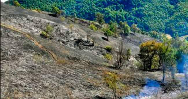 Zonguldak'ta iki noktada yangın