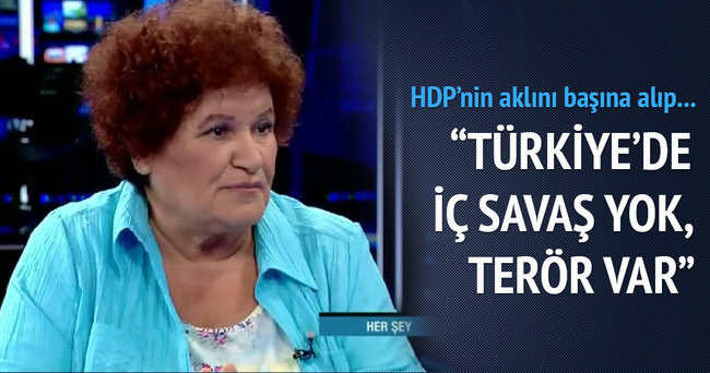 Selda Bağcan: Türkiye'de iç savaş yok terör var