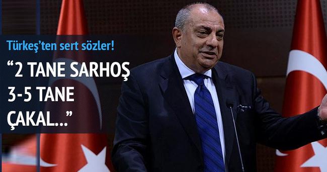 Tuğrul Türkeş basın mensuplarına açıklamalarda bulundu