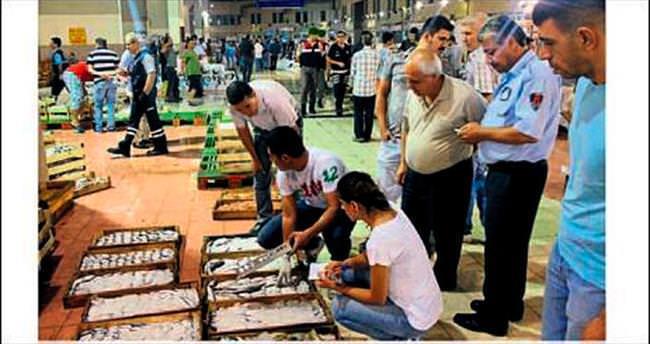 İzmir'de 2 bin kilo balığa el konuldu