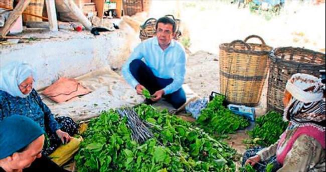 Bakan Zeybekci'den çiftçilere yardım eli