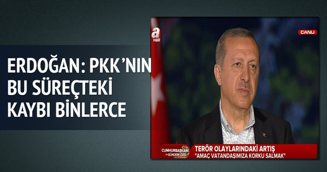 Erdoğan: PKK'nın bu süreçteki kaybı binlerle ölçülür