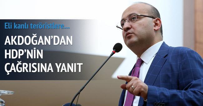 Akdoğan'dan HDP'nin çağrısına yanıt
