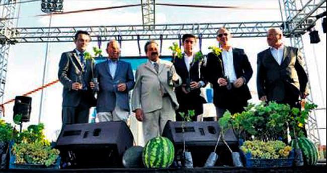 Delice'de Kültür, Kavun ve Üzüm Festivali