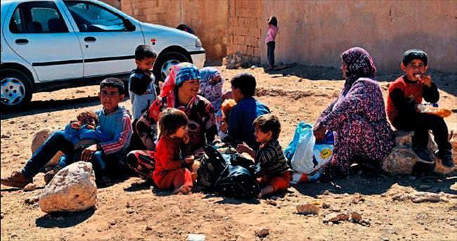 Hasan Kalyoncu'dan mülteci araştırması