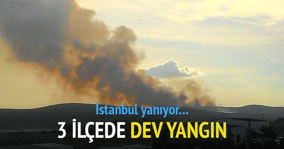 İstanbul'da 3 ilçede eş zamanlı yangın!