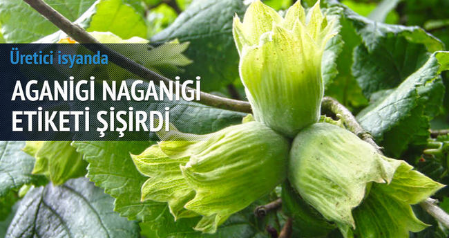 Aganigi naganigi etiketi şişirdi