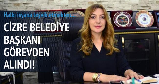 Cizre Belediye Başkanı görevden alındı!
