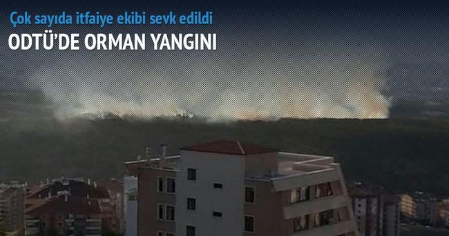 ODTÜ'de orman yangını