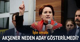 Bahçeli, Meral Akşener'i devre dışı bırakırım demişti