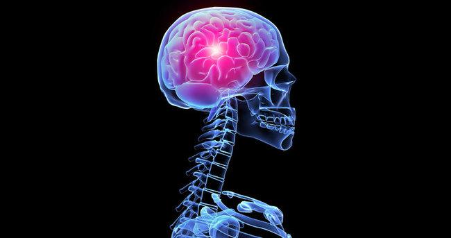 Beynin mahkemesi keşfedildi