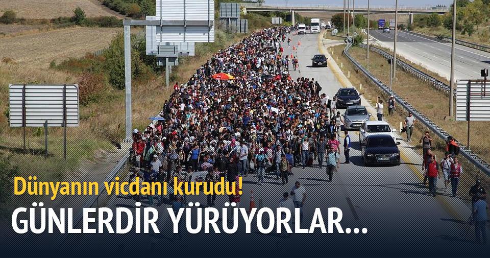 Suriyeliler yürüyüşe geçti!