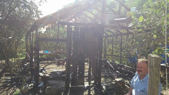 Altın Madeni Direniş Çadırı Yakıldı