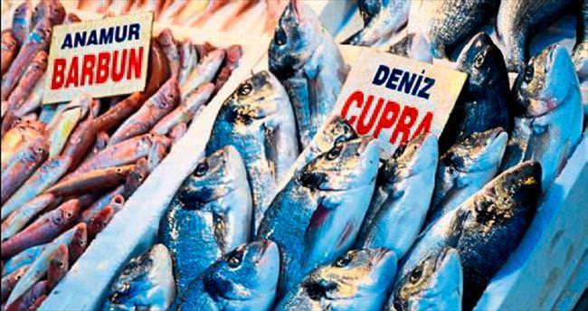 Mersin'de balık bereketiyle geldi