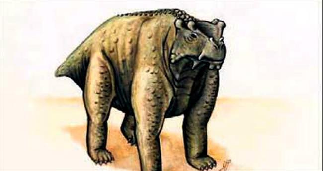 İnek büyüklüğünde sürüngen fosili
