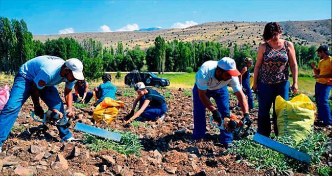 Organik Köy'den su tasarrufu