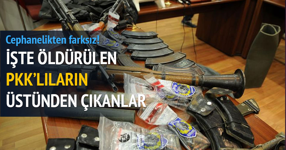 4 üst düzey PKK'lı Bingöl'de öldürüldü