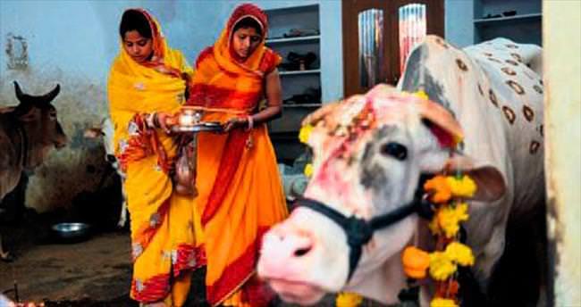 Keşmir'de 'inek kesme' isyanı