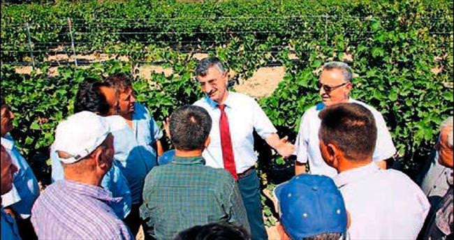 Manisa'da organik tarımı geliştireceğiz