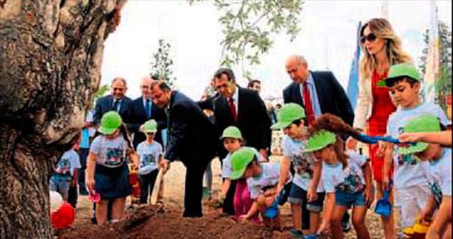 Minik öğrenciler zeytin ağacı dikti