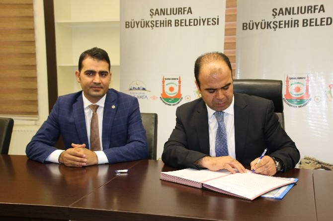 GAP Vadisi Projesi Hız Kazandı