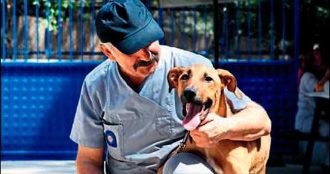 Medyatik köpek sahibini bekliyor