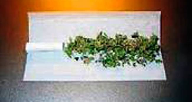 Uyuşturucuya polis bile şaşırdı