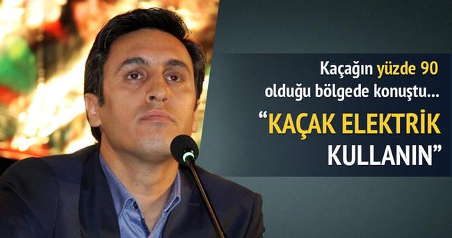 DBP Eş Başkanı'ndan kaçak elektrik çağrısı