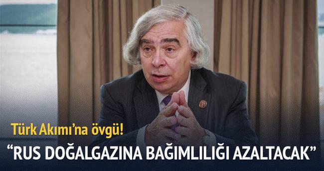 """""""Türk Akımı, Rus doğalgazına bağımlılığı artırmayacak"""""""