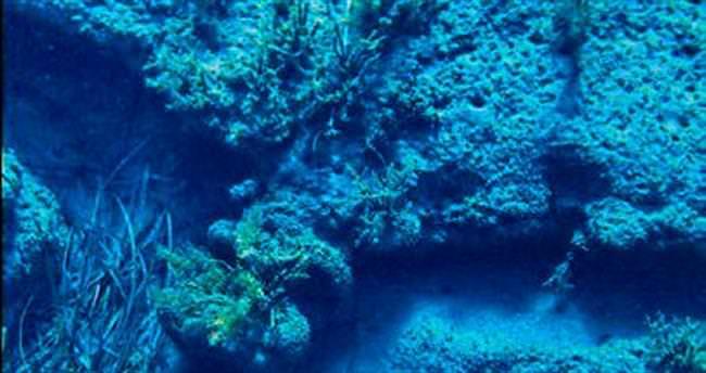 Deniz tarihine ışık tutuluyor