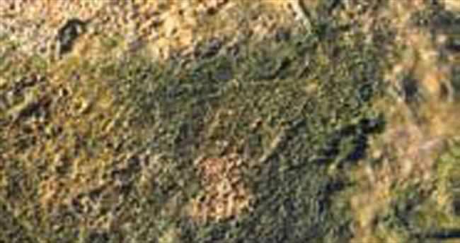 3.2 milyar yıllık taşta fotosentez izleri